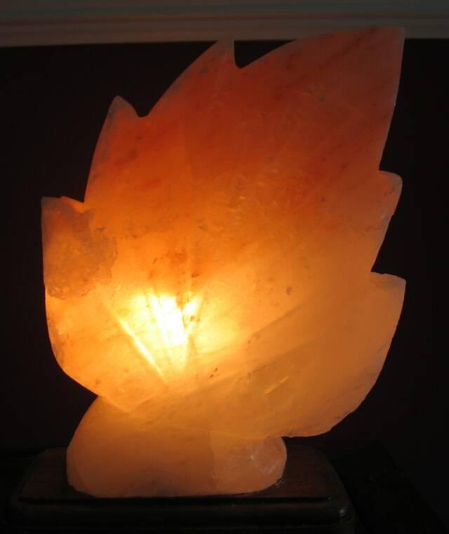 Salt Lamps For Office : salt lamps, john grisafi, himalayan lamps, health salt,